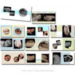 Baby Love 10x10 Album